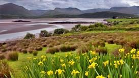 Immerse yourself in a holiday in Ireland