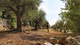 Apulien - Salentos sonnige Küste