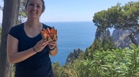 Die beste Reisezeit zum Wandern an der Amalfiküste