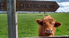 The Cleveland Way turns 50