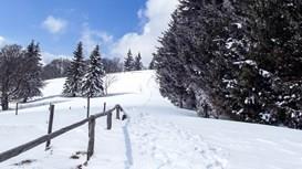 7 Gründe auch im Winter die Wanderschuhe zu schnüren