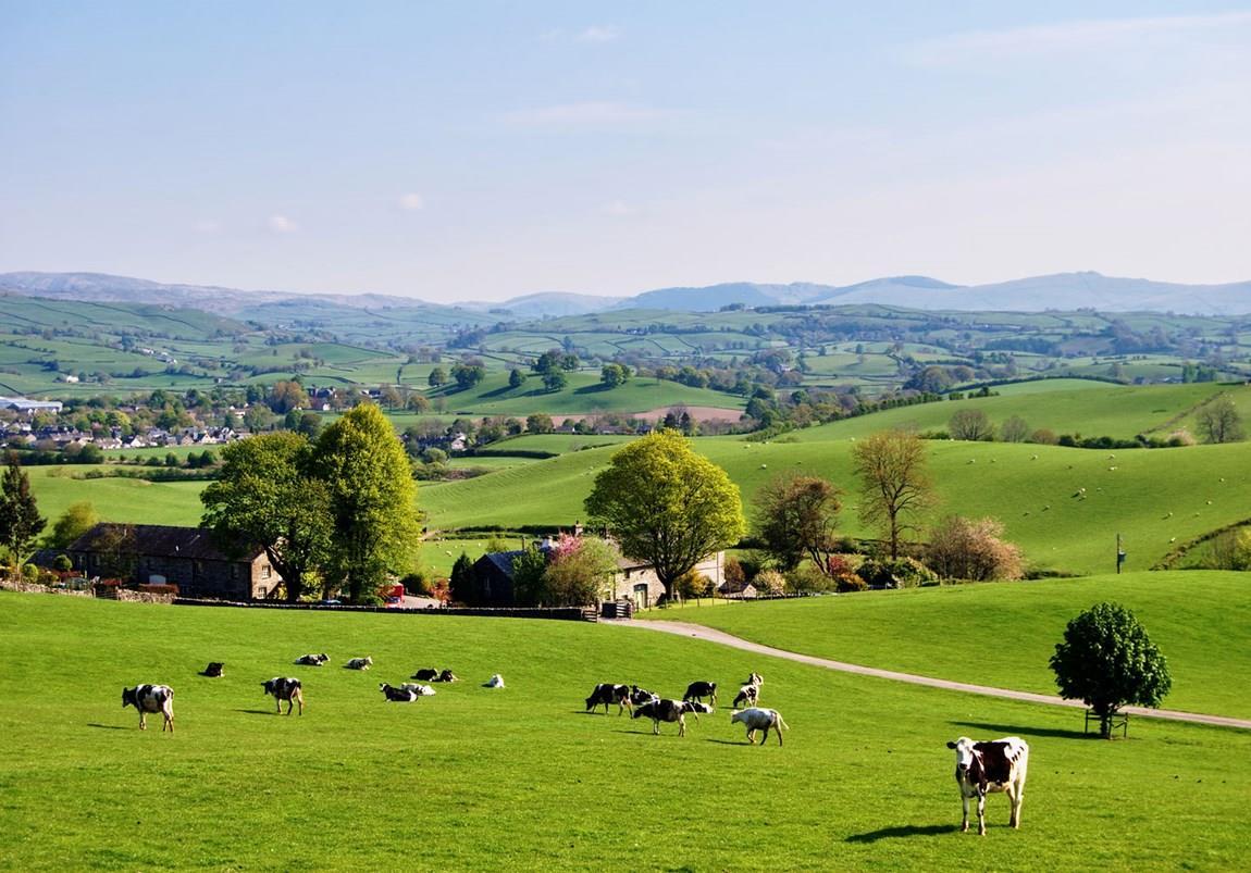 Himmlisch grüne Landschaft in England