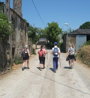 Camino & Pilgrimage